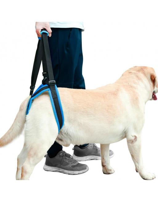 Ondersteunende loophulp  - staphulp voor honden - harnas - SMALL