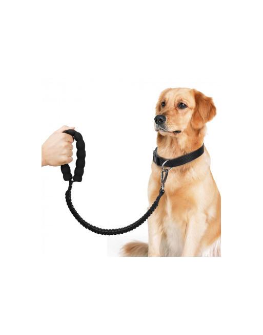 Elastische Rekbare hondenriem - Trainingslijn - reflecterend - ZWART