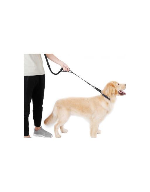Elastische Rekbare hondenriem leiband met 2 handgrepen - Trainingslijn - reflecterend - ZWART