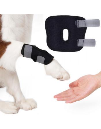 Honden brace voorpoot of...