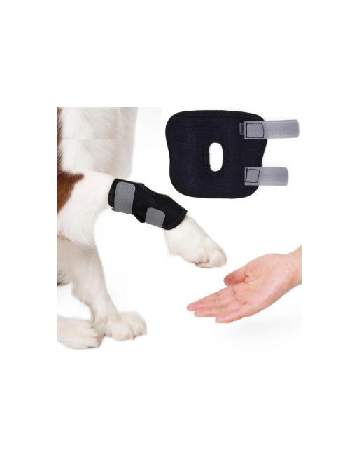 Honden brace voorpoot of achterpoot - Bescherming - SMALL - ZWART