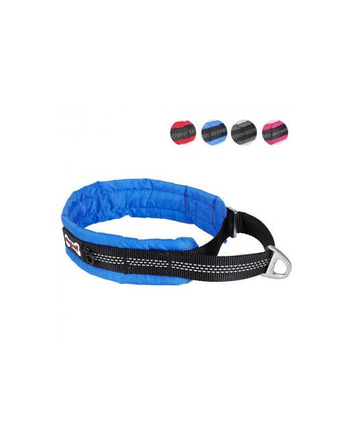 Comfortabele reflecterende halsband voor honden - EXTRA SMALL  - BLAUW