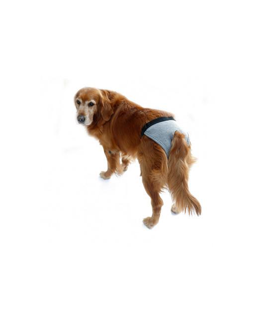 Hondenbroekje - luier voor teef - loopsheid - ongesteldheid - wasbaar - EXTRA SMALL - GRIJS