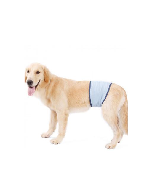 Honden buikband - luier voor mannelijke hond reu - plasband - wasbaar - EXTRA SMALL - BLAUW