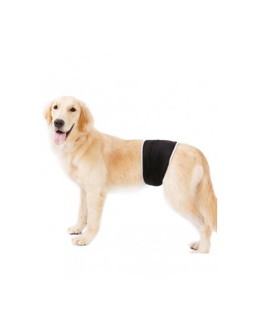 Honden buikband - luier voor mannelijke hond reu - plasband - wasbaar - EXTRA SMALL - ZWART