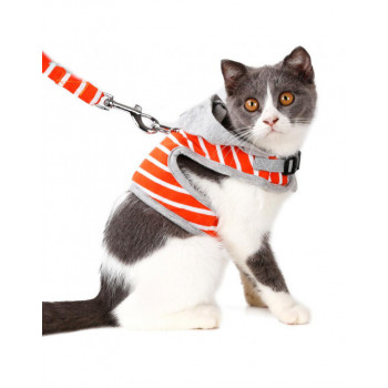 halsbanden, leibanden en harnassen speciaal voor de poes of kat