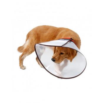 hulpmiddelen voor uw hond bij kwetsuren en operaties
