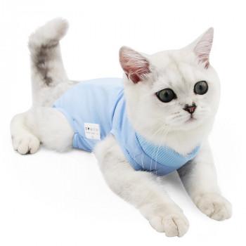 poezenkleding en jasjes voor uw kat allerhande kattenkleding