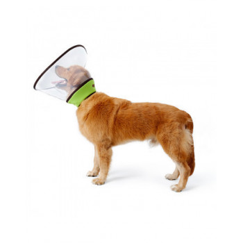hondenkragen