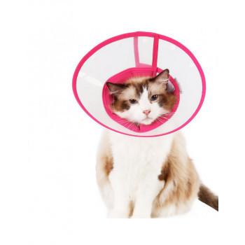 Kattenkragen