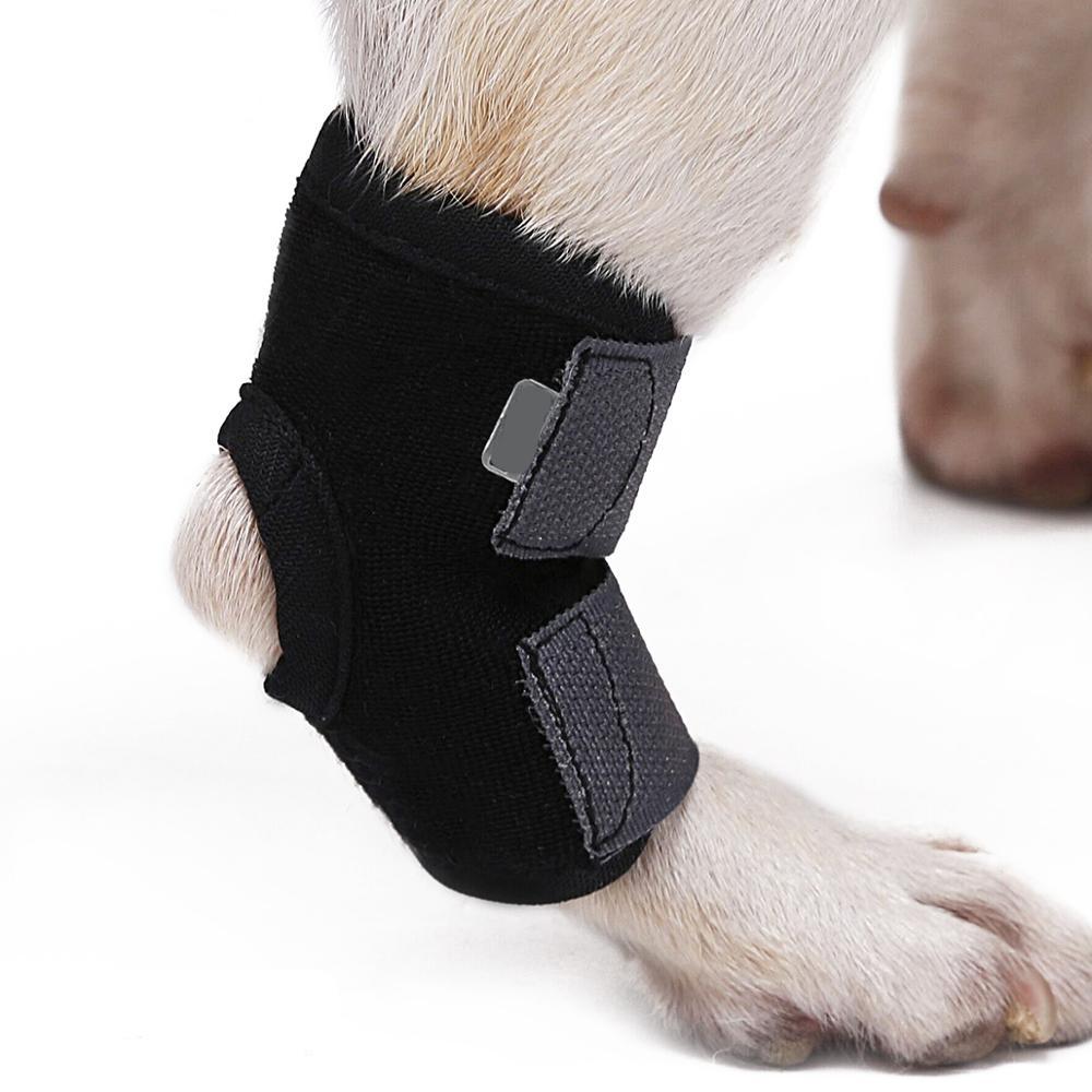 knie brace voor hond