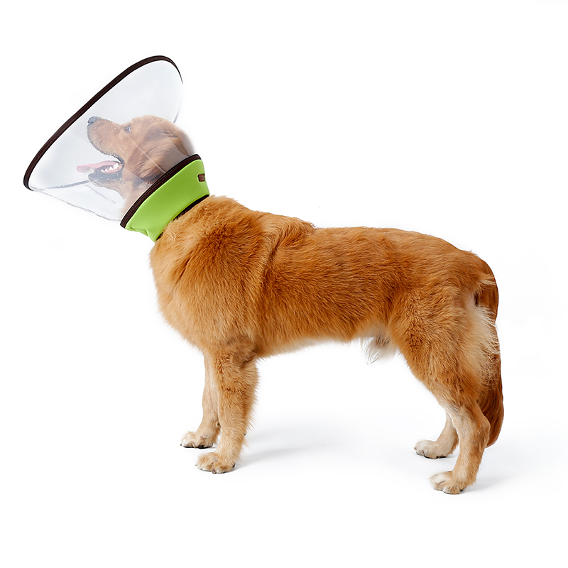 plastic hondenkraag - doegly